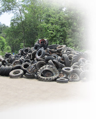 Trillium Tire